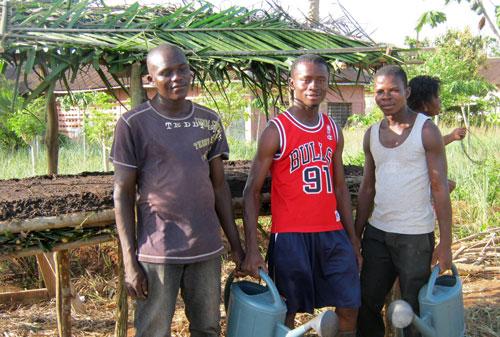 Togo-nursery-platform-2014