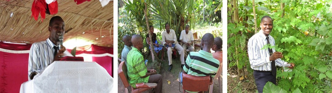 Knowing Moringa in the North of Haiti